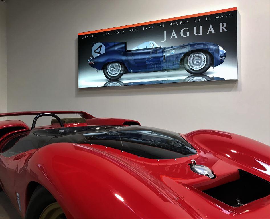 dye-sub-fabric-print-jaguar